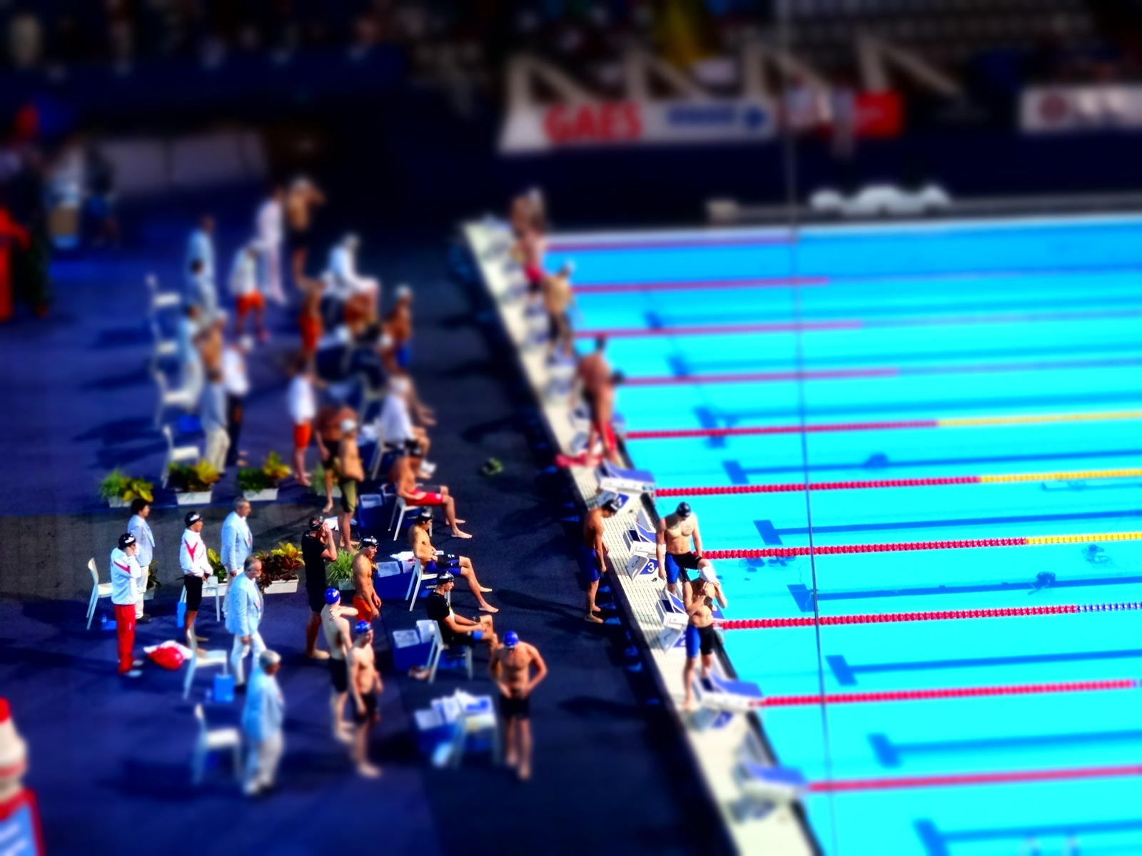 200freerelay_flickr_LisiJakupsstovu